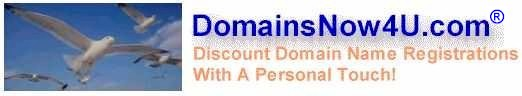 web hosting, web site promotion, cheap domain name registration, domain transfer, free domain name